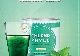 Chloro Mint ChloroPhyll3
