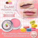Sweet Macaron Lip Balm4