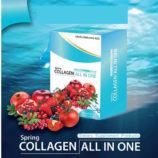 Spring-Collagen