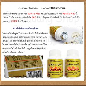 Reishi Mushroom Extract by Nature Plus4