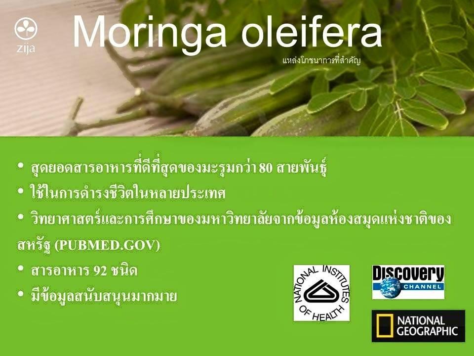 Super Mix Moringa Oleifera Blend By Zija Thailand Best
