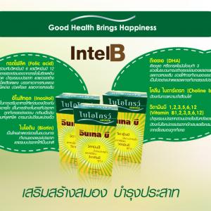 Biogrow Intel B10