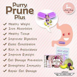 Purry Prune Plus11