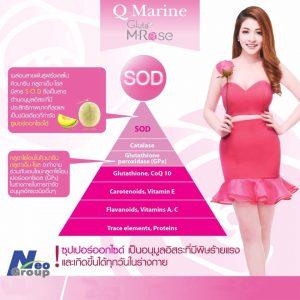 Q Marine Gluta M Rose12