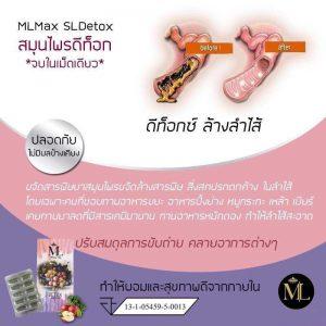 ML Max SL Detox7