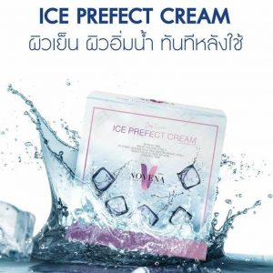 Ice prefect cream2
