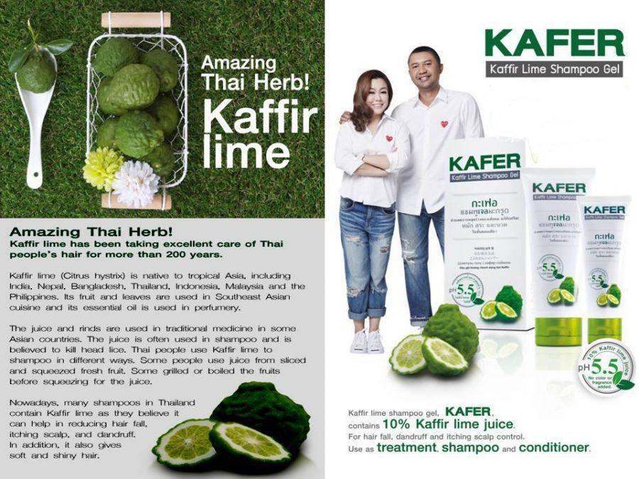 Kaffir Lime Shampoo Gel
