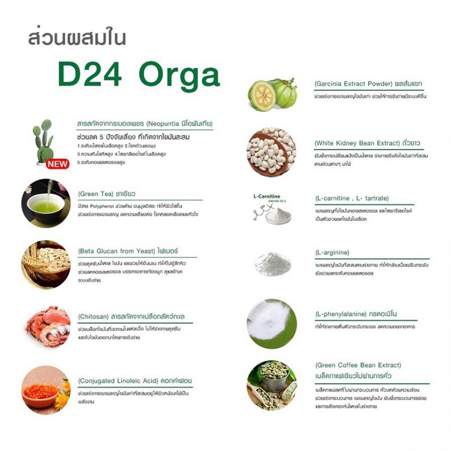 D24 Orga